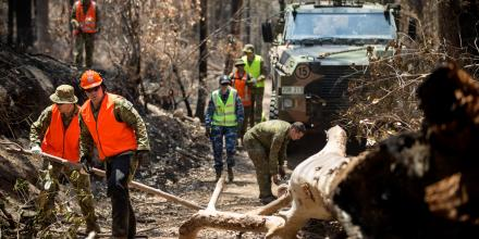 Australian Defence Force personnel clear fallen debris from a trail at Mount Barney National Park, Queensland. Photo: Corporal Jessica de Rouw