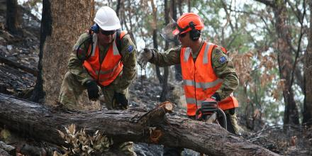 Sapper Tim Daniels, right, discusses with Sapper Aemon Kelly the best way of cross-cutting a fallen tree blocking Commission Road in Wollemi Nation Park south of Bulga, NSW. Photo: Major Cameron Jamieson